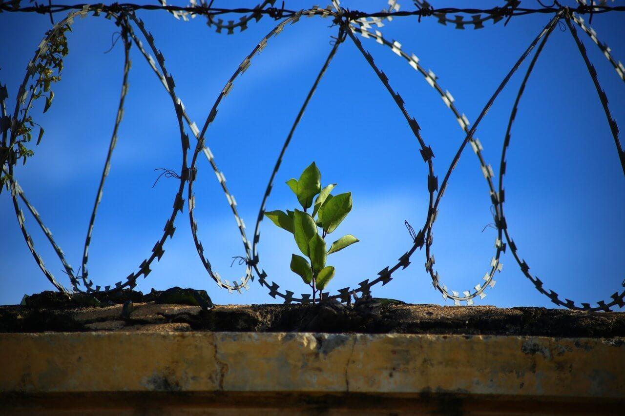 Women's Federal Prison Camp